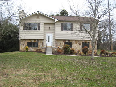 Knoxville Single Family Home For Sale: 9301 Ashmeade Rd