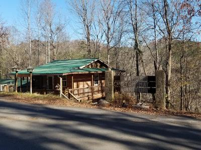 Sevierville Commercial For Sale: 3753 Pittman Center Rd