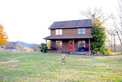 Tazewell Single Family Home For Sale: 381 Whitaker Lane