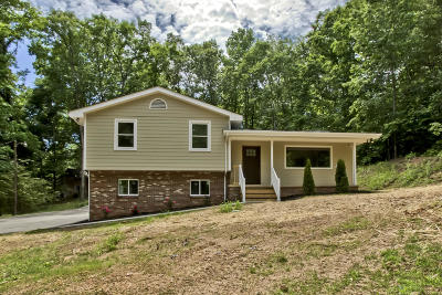 Knoxville Single Family Home For Sale: 1617 N Campbell Station Rd