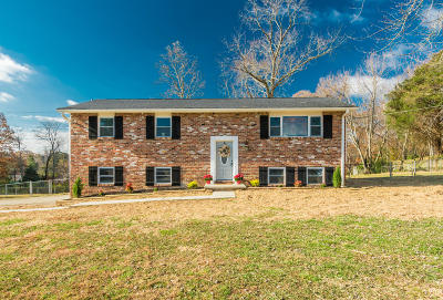 Knoxville Single Family Home For Sale: 2201 Roundtree Rd