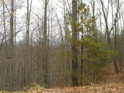 Sevierville Residential Lots & Land For Sale: Stackstone Rd