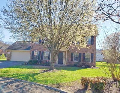 Knoxville Single Family Home For Sale: 2208 Jockey Run Tr