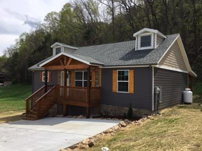 Sevierville Single Family Home For Sale: 3135 Cherokee Valley Drive