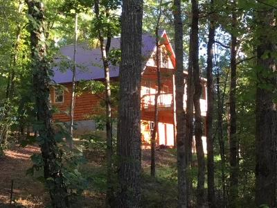 Sevierville Single Family Home For Sale: 3884 Locust Ridge Rd. Rd