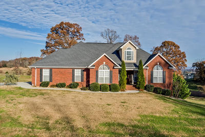 Blount County Single Family Home For Sale: 1252 Broaderick Blvd