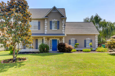 Knoxville Single Family Home For Sale: 7006 Cherry Grove Rd