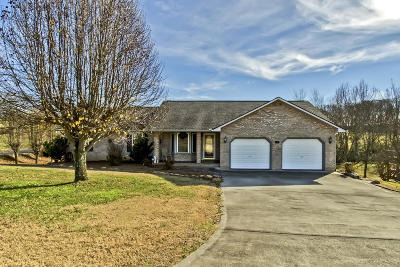 Loudon County Single Family Home For Sale: 236 Overlook Drive