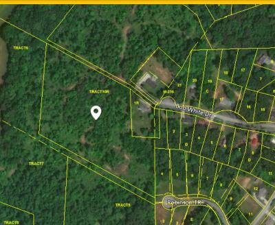 Loudon Residential Lots & Land For Sale: 539 Bob White Drive