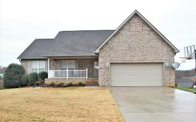 Lenoir City Single Family Home For Sale: 255 S S. Wingate Drive