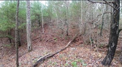Sevierville Residential Lots & Land For Sale: Lone Ridge Drive