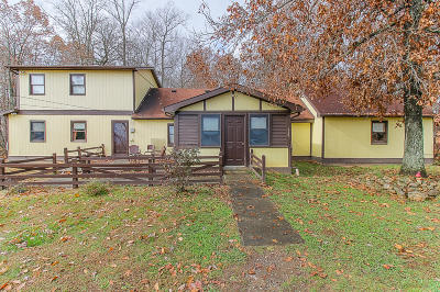 Claiborne County Single Family Home For Sale: 359 Center Lane