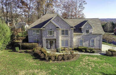 Knoxville Single Family Home For Sale: 12899 Key Hole Lane