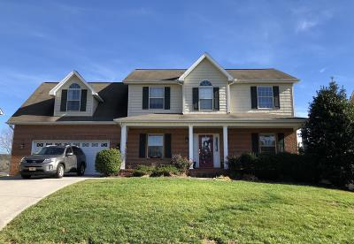 Knoxville Single Family Home For Sale: 1112 Paxton Drive