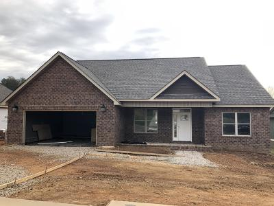 Lenoir City Single Family Home For Sale: 635 Carrington Blvd
