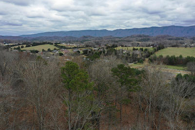 Blount County Residential Lots & Land For Sale: Lots 7r & 8r Mint Rd