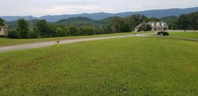 Maryville Residential Lots & Land For Sale: 1561 Mint Meadows Drive