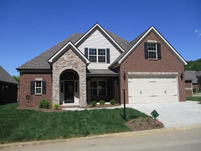 Knoxville Single Family Home For Sale: 11341 Shady Slope Way