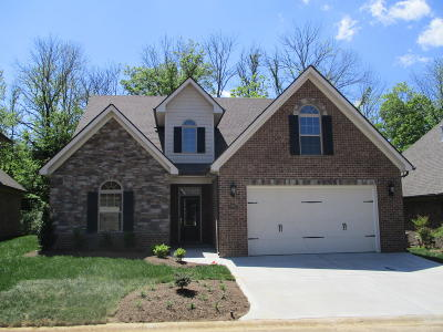 Knoxville Single Family Home For Sale: 11342 Shady Slope Way