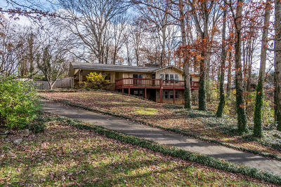 Knoxville Single Family Home For Sale: 1104 Delray Rd