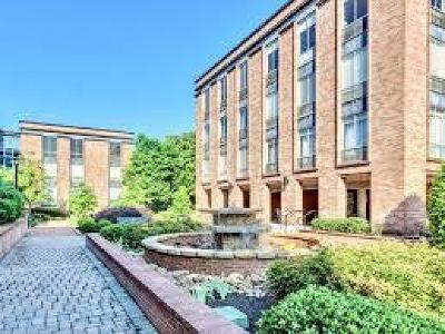 Knoxville Condo/Townhouse For Sale: 1400 Kenesaw Ave #Apt 32e