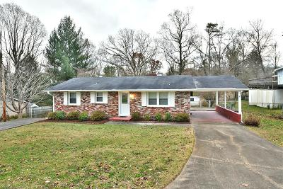 Powell Single Family Home For Sale: 117 Early Dr Drive