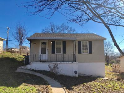 Knoxville Single Family Home For Sale: 208 Chickamauga Ave