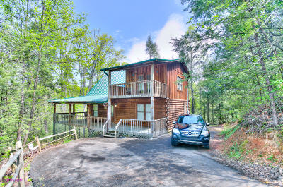 Sevierville Single Family Home For Sale: 733 Ski View Lane