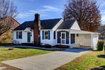 Loudon Single Family Home For Sale: 739 Ferry St