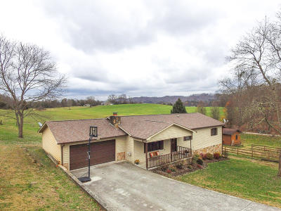 Andersonville Single Family Home For Sale: 514 Sportsman Rd