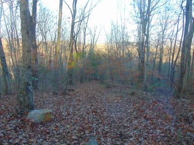 Anderson County, Campbell County, Claiborne County, Grainger County, Union County Residential Lots & Land For Sale: Russell Lane