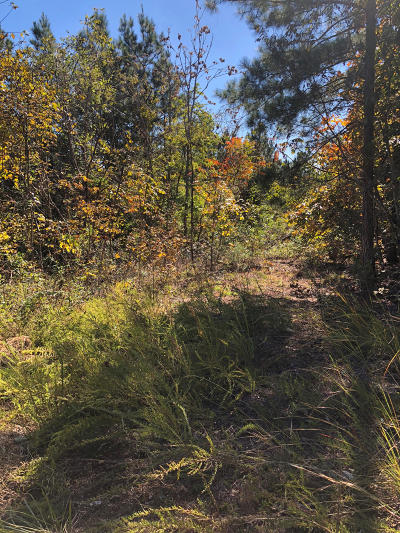 Residential Lots & Land For Sale: Lamontville/Cuno Rd