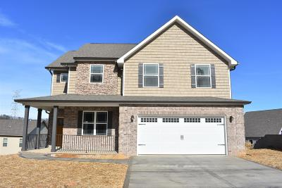 Knoxville Single Family Home For Sale: 511 Tuxford Lane