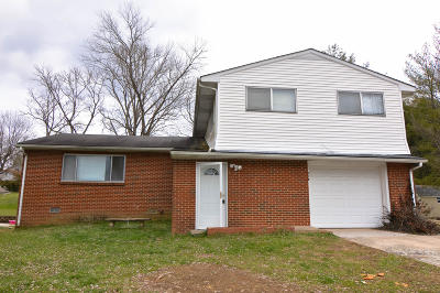 Single Family Home For Sale: 313 Vernal Drive