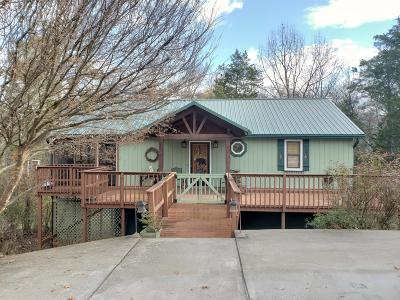 Blount County Single Family Home For Sale: 3310 Cove Point Drive
