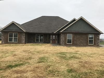 Blount County Single Family Home For Sale: 3805 Coulter View Lane