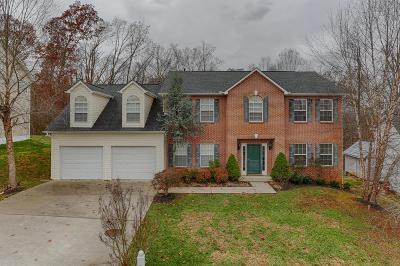 Knoxville Single Family Home For Sale: 705 Mountain Pass Lane