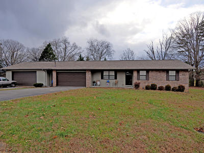 Sevier County Single Family Home For Sale: 559 Allyson Drive