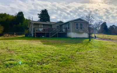 Knoxville Single Family Home For Sale: 812 Deaderick Rd