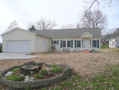 Monroe County Single Family Home For Sale: 1231 Park St