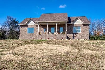 Sevier County Single Family Home For Sale: 842 Reagan View Lane
