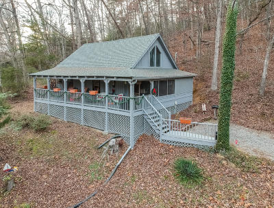 Sevier County Single Family Home For Sale: 2148 Little Valley Road Rd #3