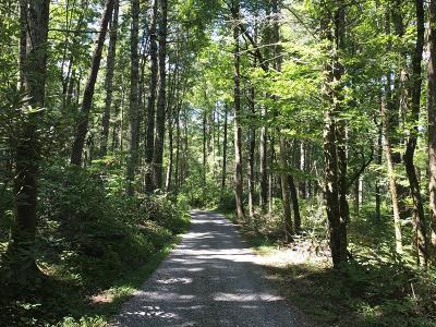 Blount County Residential Lots & Land For Sale: Mountain Breeze Drive