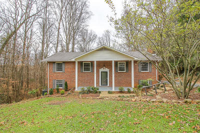 Anderson County Single Family Home For Sale: 939 W Outer Drive
