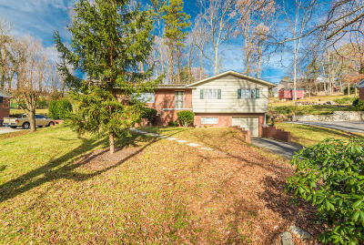 Knoxville Single Family Home For Sale: 2201 Martha Berry Drive