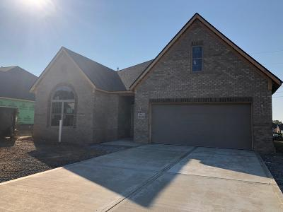 Maryville Single Family Home For Sale: 911 Springwood Lane