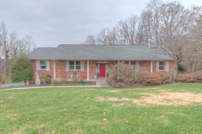 Knoxville Single Family Home For Sale: 9705 Tunbridge Lane