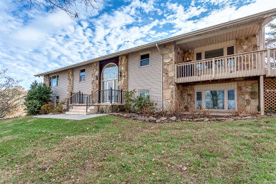 Knoxville Single Family Home For Sale: 4520 High Vista Lane