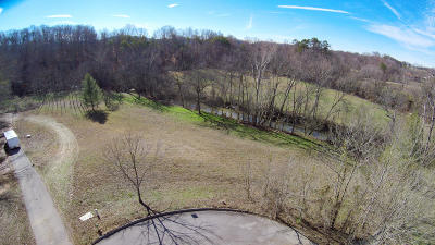 Friendsville, Greenback, Louisville, Maryville, Sevierville, Tallassee, Townsend, Townsend/walland, Vonore, Walland Residential Lots & Land For Sale: Chickadee Lots 26&27 Circle