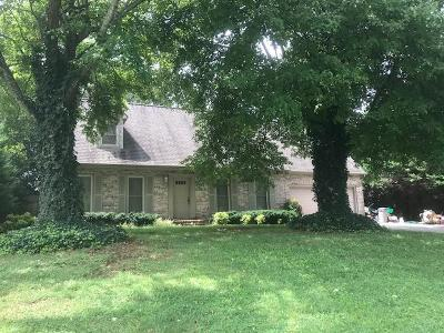 Blount County Single Family Home For Sale: 1117 Windridge Drive